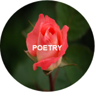 poetry-icon-cropped